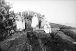 Gourbi Arabe en Kabylie