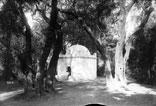 Tombeau Arabe près Blidah