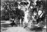 Le Parc. Au 1er plan, Mr Lauzeral et René Ancely
