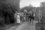 Vendanges aux carrés. Georges, Marthe et René Ancely