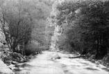 Route de St Georges à Carcanières