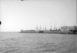 Le môle et le Port