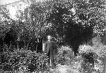 Mr Benezet dans son jardin