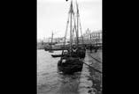 La jetée et le Port
