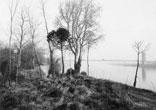Pointe du Touch et de Garonne