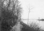 Allée du Bord de Garonne en-dessous du Mont