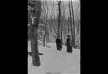 Sous bois du Bédat avec neige