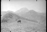Massif du Pic du Midi vu de Haut Blanco