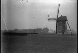 Moulin, bois du château (février)
