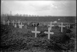 Un coin du cimetière militaire (mars)